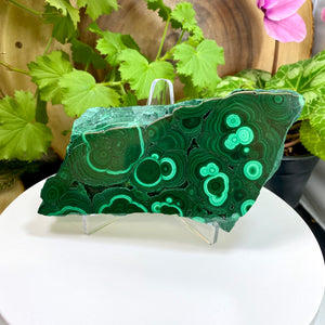 Load image into Gallery viewer, Malachite Polished Double Sided Slab from the Congo Region with FREE Display Stand - Perfect for Collectible Mineral Display and Home Décor