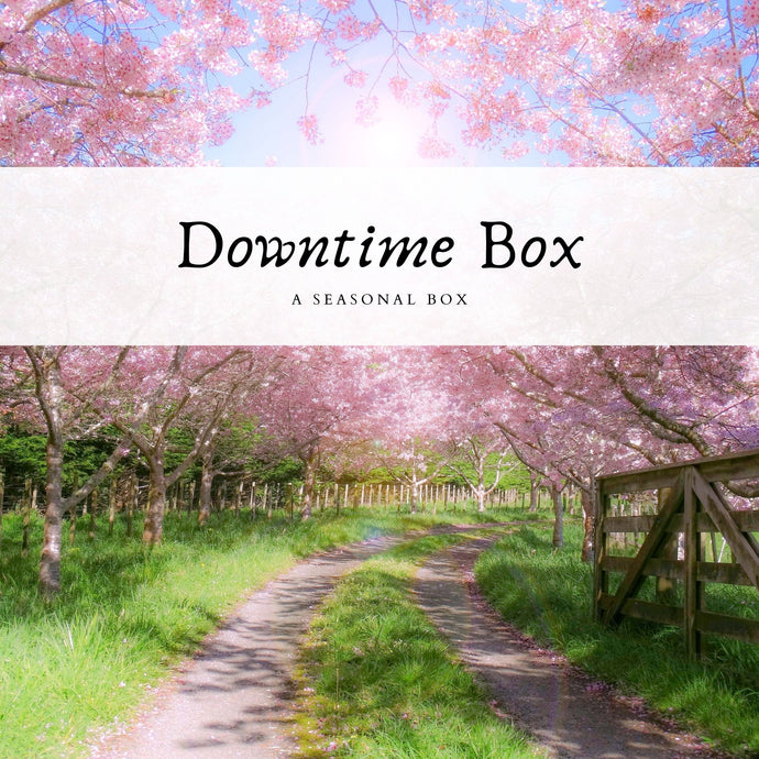 The Downtime Box - The Not Busy Company - #product_description#