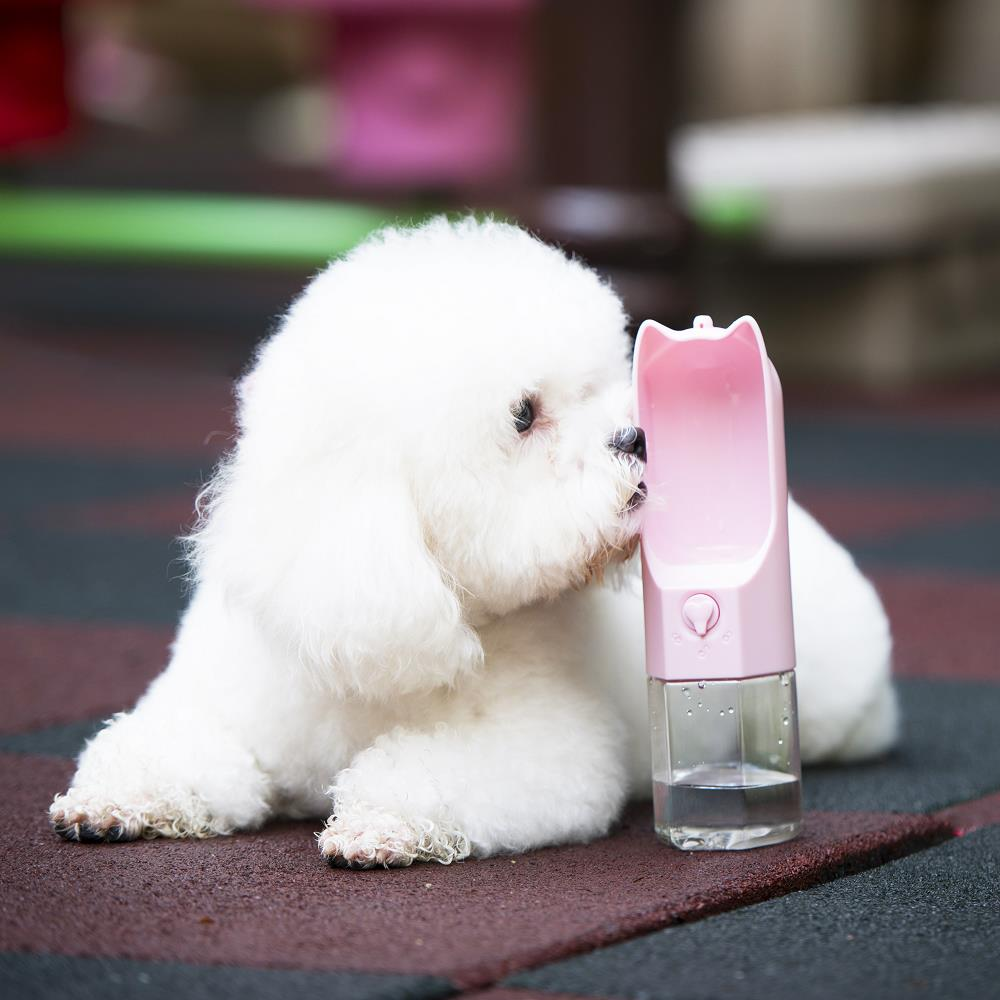 Petmii Portable Dog Water Bottle