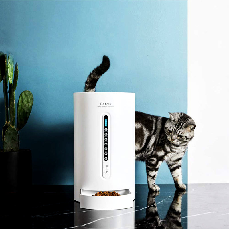 black and grey striped cat looking at the Petmii Smart Pet Cat Dog Feeder
