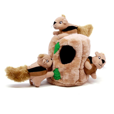 Outward Hound Chasing Hide-A-Squirrel Dog Toy