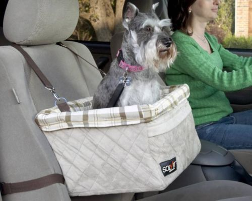 medium sized grey dog using the Solvit Tagalong Pet Booster Satety Leash in a car
