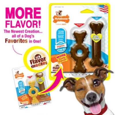 Nylabone Puppy Ring and Bone Petite (twin Pack)