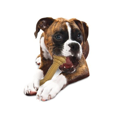 Nylabone Power Dog Chew Barbell Peanut Butter Toy
