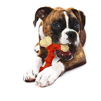 Large dog chewing on the Nylabone Power Dual Chew Bone Bacon Chew Toy