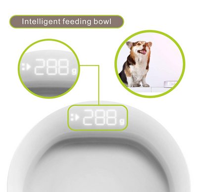 Petmii Digital Feeding Bowl