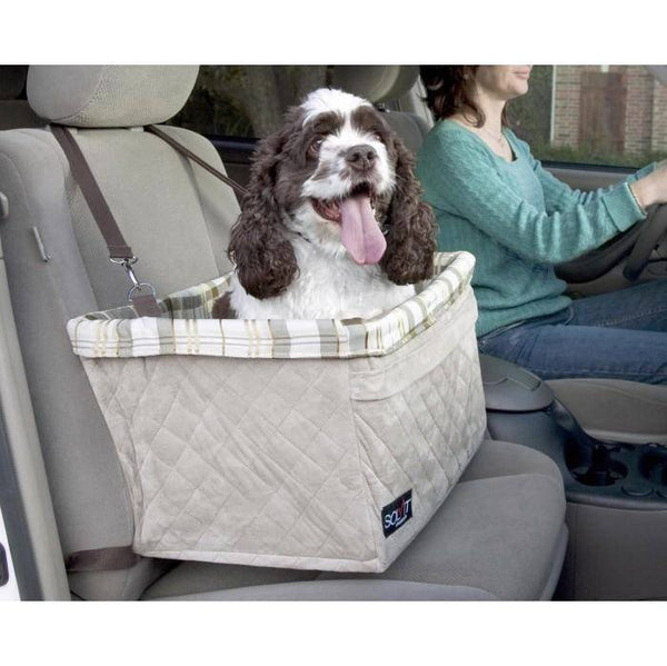 medium sized brown and white dog using the Solvit Tagalong Pet Booster Satety Leash in a car