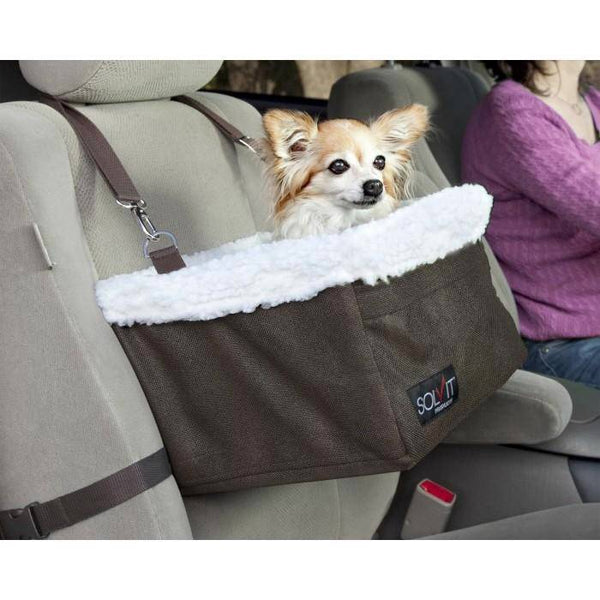 tiny dog using the Solvit Tagalong Pet Booster Seat in a car