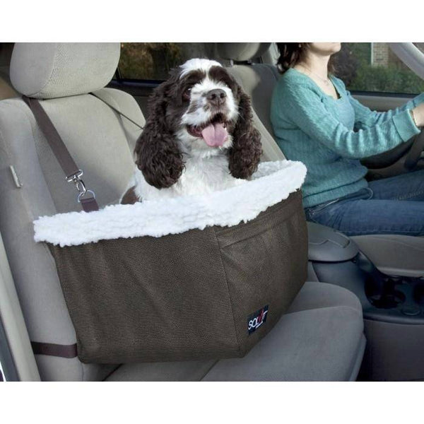 medium brown and white dog using the Solvit Tagalong Pet Booster Seat in a car