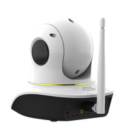 side angle of pet camera with laser pointer