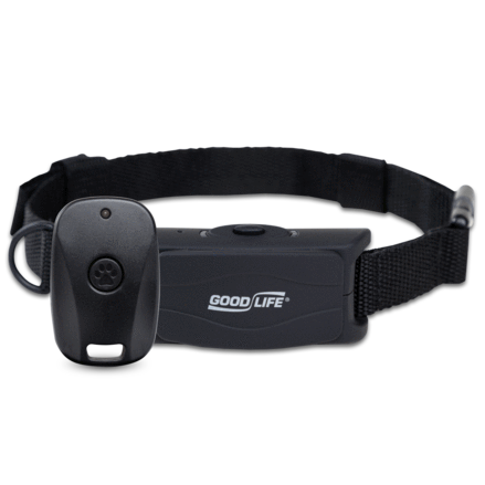 Humane Training Collar Combines Ultrasonic Sound, Vibration and Remote