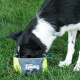 Large dog drinking from the Outward Hound Port A Bowl