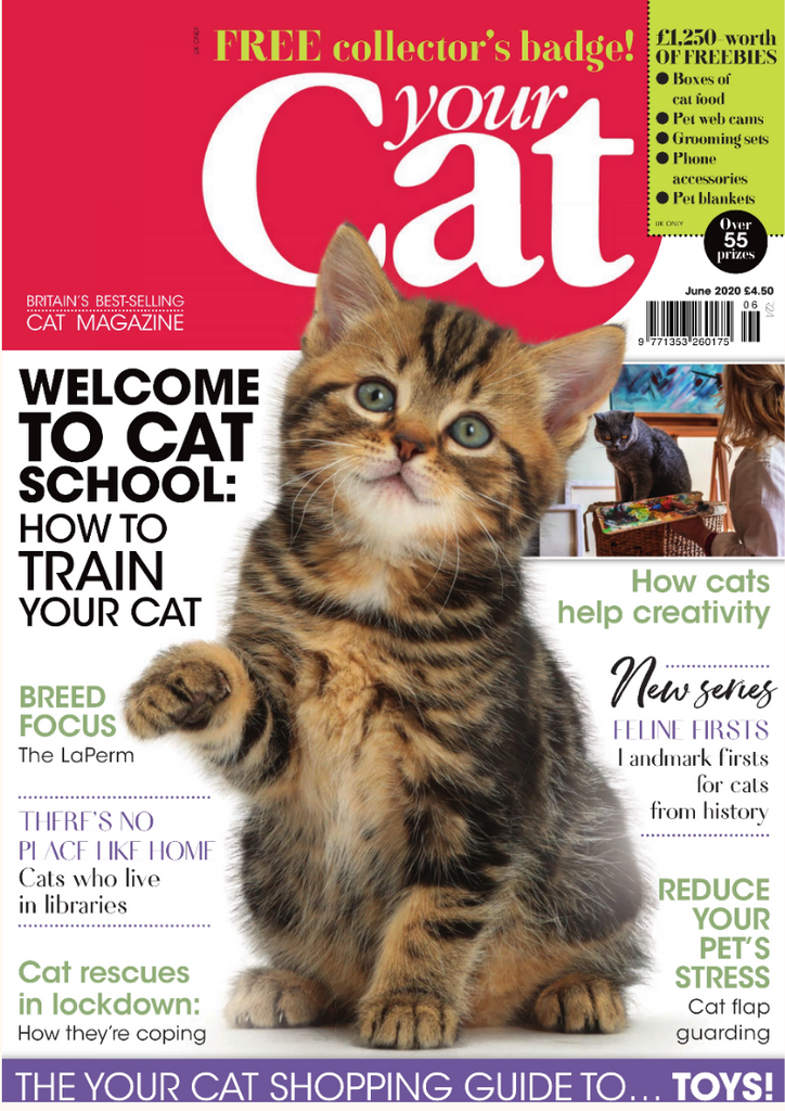 Natusan Your Cat Magazine