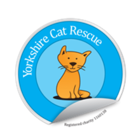 Yorkshire Cat Rescue Charity Shelter