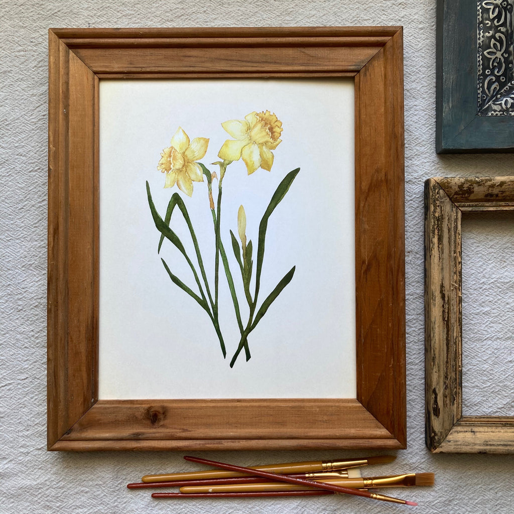 March | Daffodil Botanical