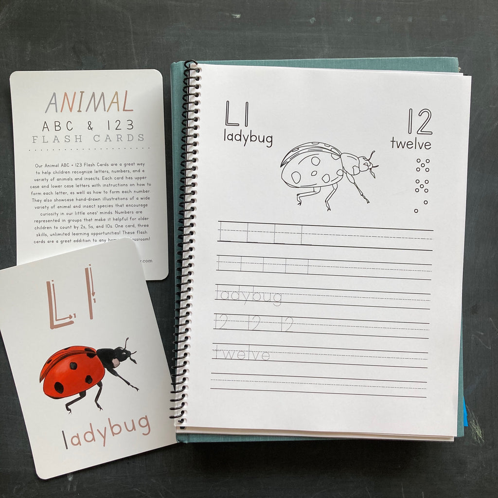 Animal ABC + 123 Cards & Workbook BUNDLE