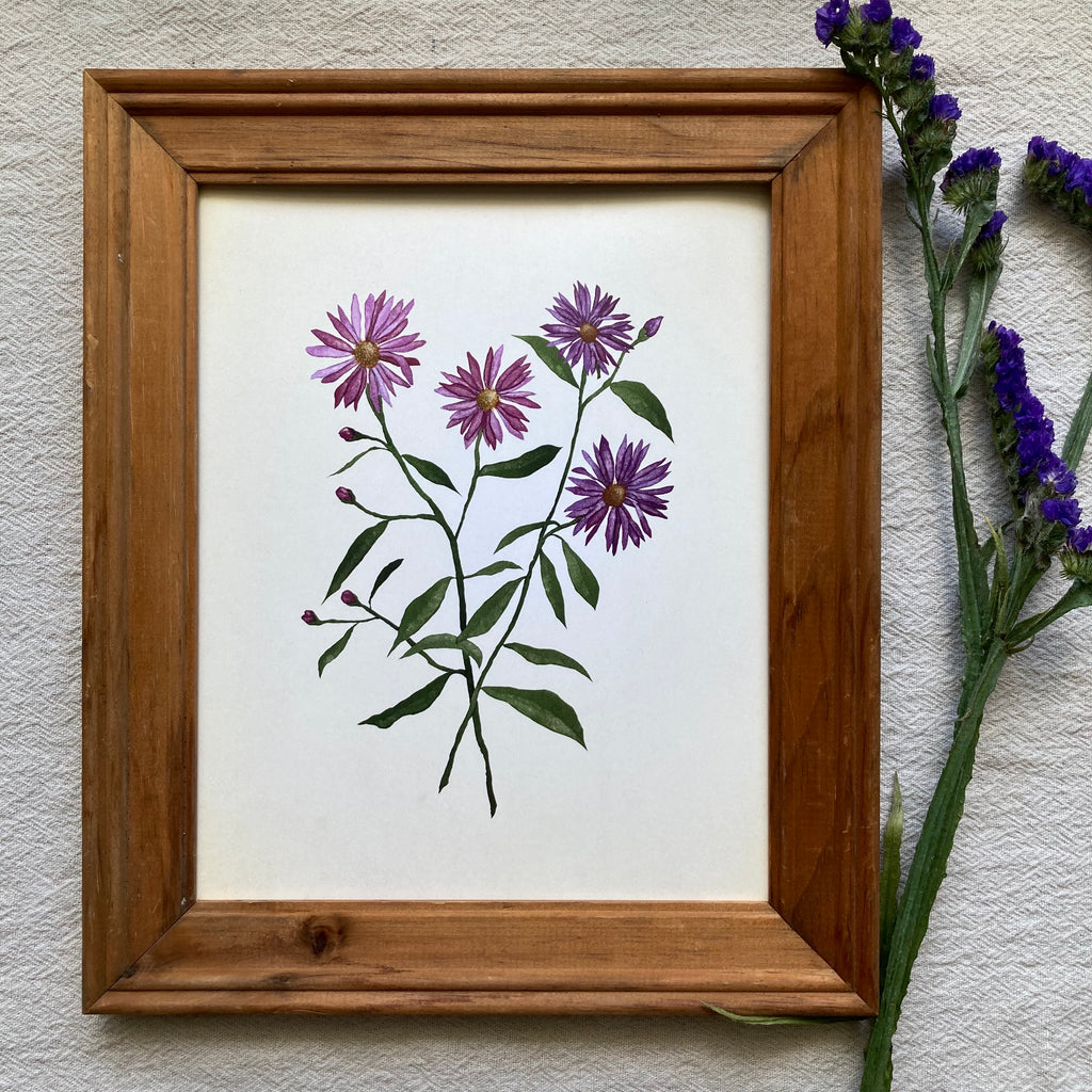 September | Aster Botanical