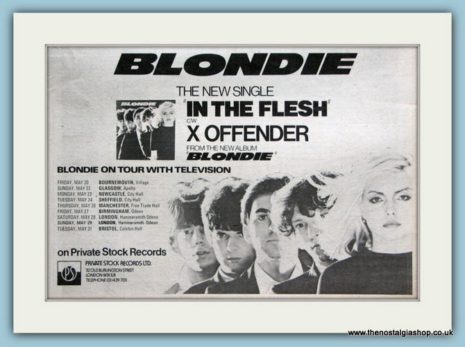 Blondie In The Flesh Original Advert 1977 (ref AD2096)