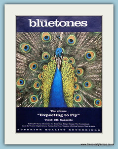 The Bluetones Expecting To Fly Original Music Advert 1996 (ref AD3392)