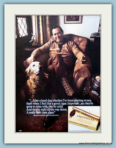 Imperial Panatella Cigars Original Advert 1974 (ref AD6142)
