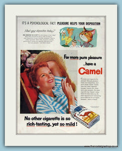 Camel Cigarettes Original Advert 1965 (ref AD8297)