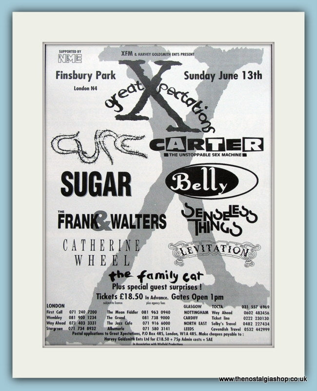 Great Xpectations Finsbury Park 1993 Festival Advert (ref AD3348)