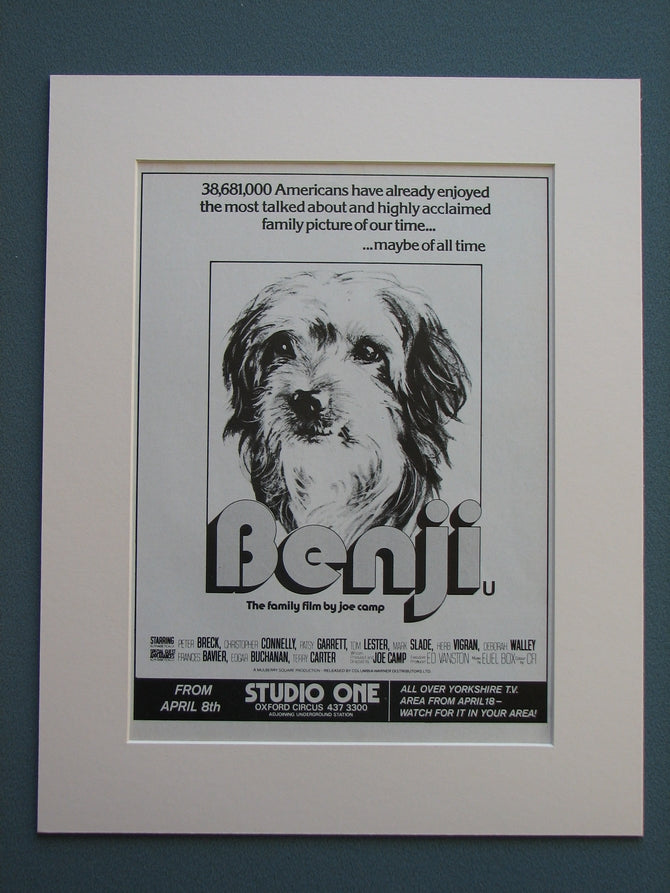Benji 1976 Original advert (ref AD706)