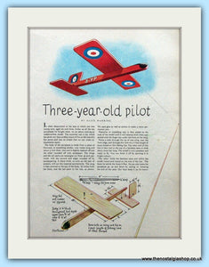 Pilot Model Aeroplane By Alice Warring Original Advert 1951 (ref AD4706)