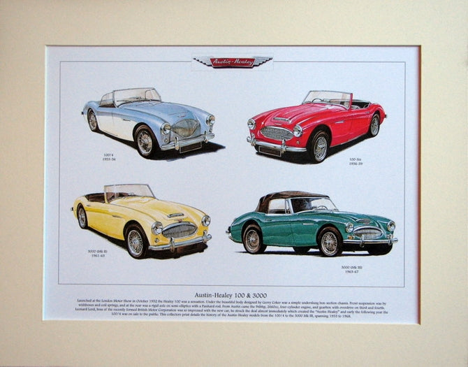 Austin - Healey 100 & 3000  Mounted Print