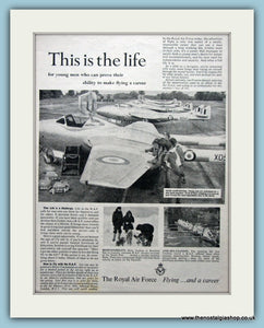The Royal Air Force Flying And A Career Original Advert 1956 (ref AD6280)