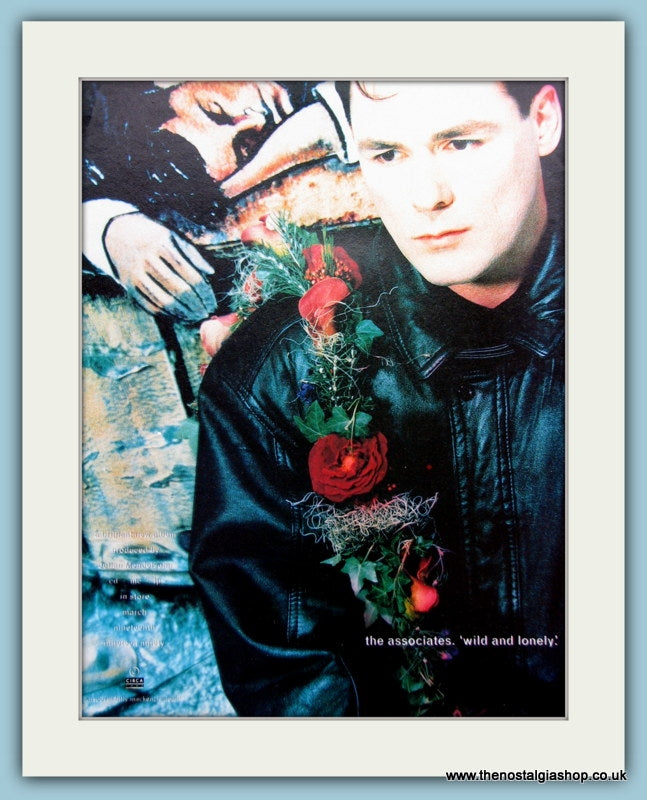 The Associates Wild And Lonely Billy Mackenzie 1990 Original Advert (ref AD3060)