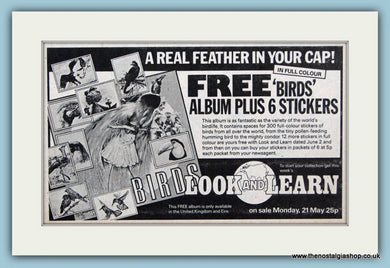 Look and Learn Free Birds Album And Stickers Original Advert 1979 (ref AD6401)
