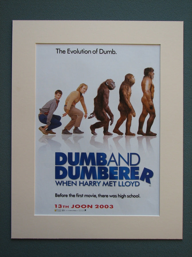 Dumb And Dumberer When Harry Met Lloyd 2003 (ref AD753)