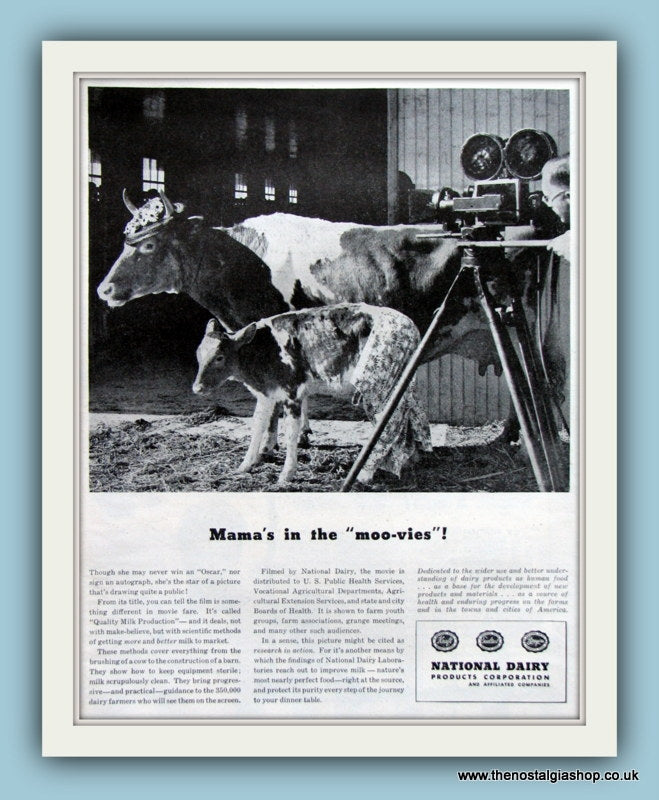 National Dairy Products Corporation. Original Advert 1946 (ref AD8086)