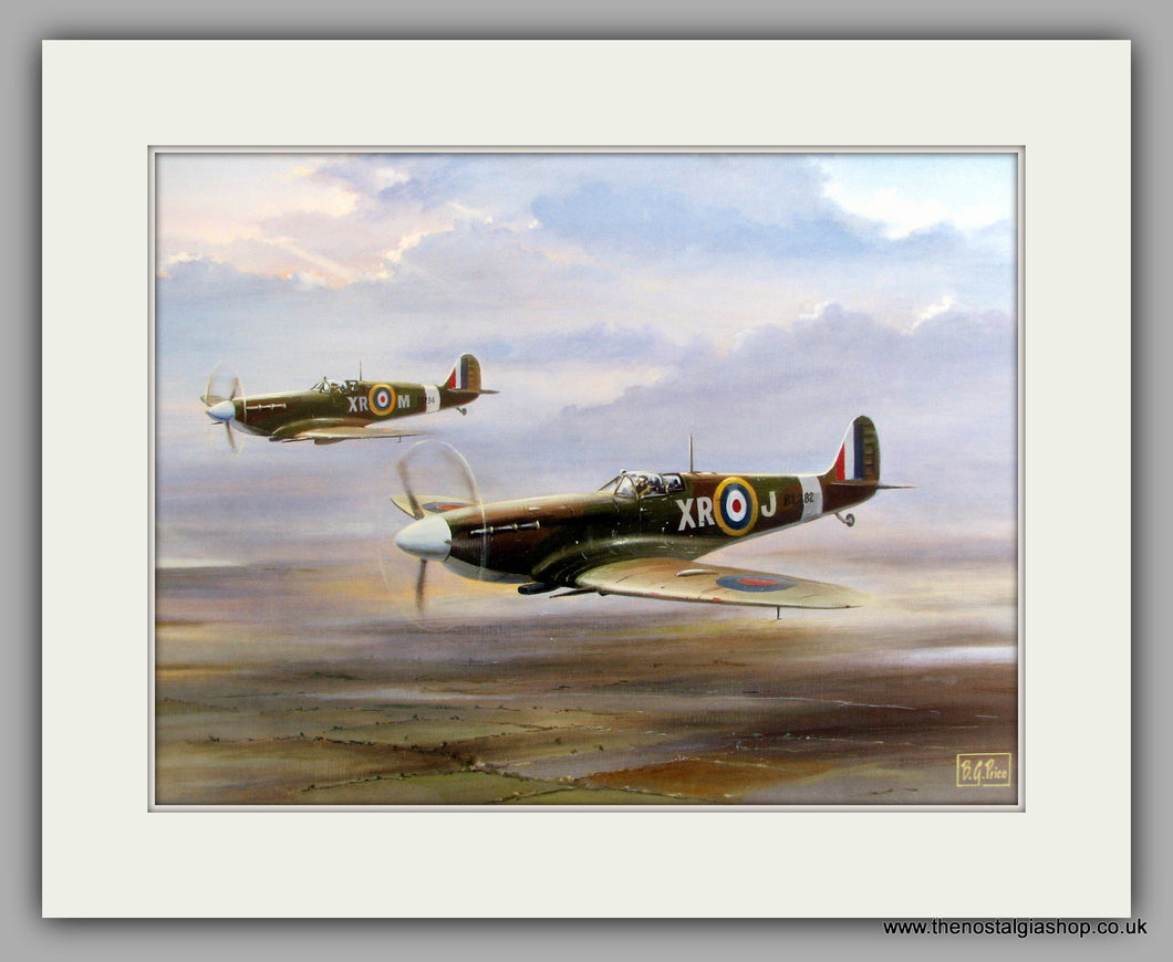 Spitfires. Mounted Aircraft print (ref N20)