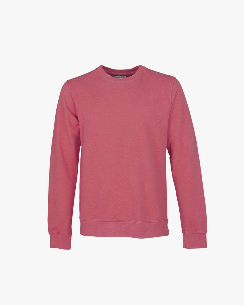 Sudadera - raspberry pink - Tequilasunset
