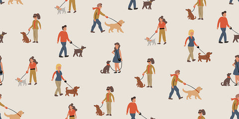 infographic of men and women walking dogs on leads