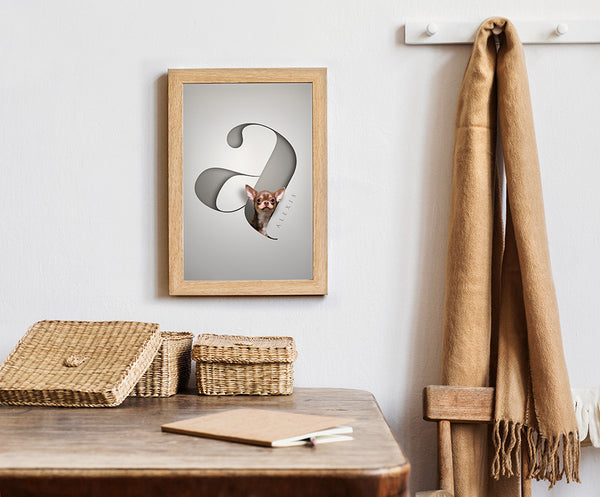 cute chihuahua dog peeking out of a letter framed hanging on a hallway wall