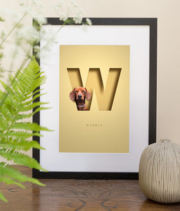 black wood picture frame on a table top of a cute red dachshund on a pale yellow background. designed so she is looking out of a 3D cutout effect letter W that is the first letter of her name. her full name is also written in a sophisticated font underneath the W