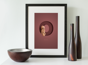 black wood framed picture of an apricot coloured cockapoo sitting inside the letter O on a burgundy red background