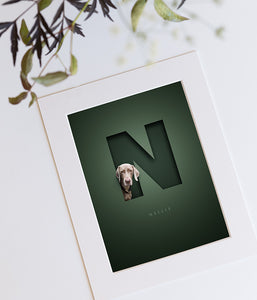 dark green picture design with a silver grey weimaraner looking out of the letter N that has a 3D cutout look and the dog's name is written in an elegant serif font underneath the N