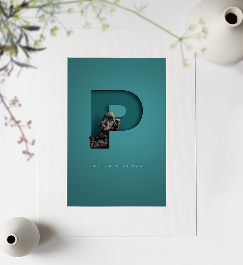 Aqua blue green personalised picture with cute black spaniel dog looking out of a 3D cutout effect letter P. Neat lettering of the dogs full name is written underneath the P. picture is in an off-white photo mount ready to go in a frame