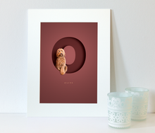 Load image into Gallery viewer, picture in a white photo mount of a furry cockapoo dog sitting within a letter O on a burgundy red background