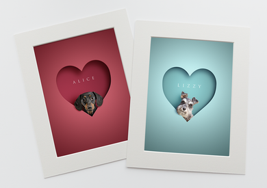 two brightly coloured heart pictures in red and sky blue with cute dachshund and schnauzer dogs sitting inside the heart shape in a 3D effect