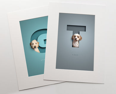 two colourful premuim quality prints inside white photo mounts. a fluffy dog is sitting in each cut out of paper effect capital letter that has a 3D effect