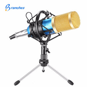Condenser Sound Recording Microphone With Shock Mount For Radio Braodcasting Singing Recording | KTV Karaoke