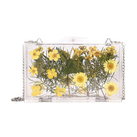 Transparent Flower Pattern Small Square Bag