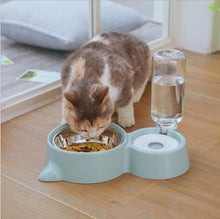 Afbeelding in Gallery-weergave laden, TCW045  Double bowl stainless steel pet automatic drinking water feeder anti-tipping