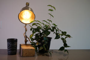 Zedneck Table Lamp
