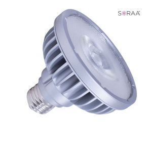 Bulbrite 777757 LED PAR30SN